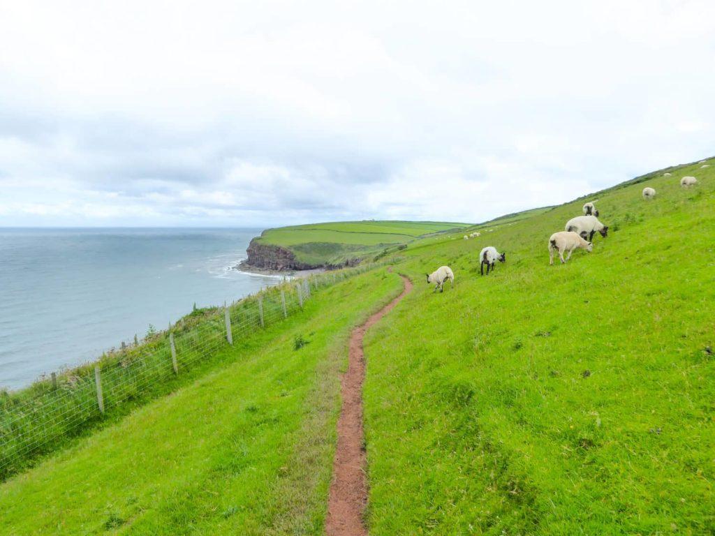 Walking holiday in UK - Coast to Coast