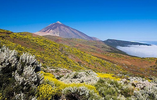 Mont Teide Hike