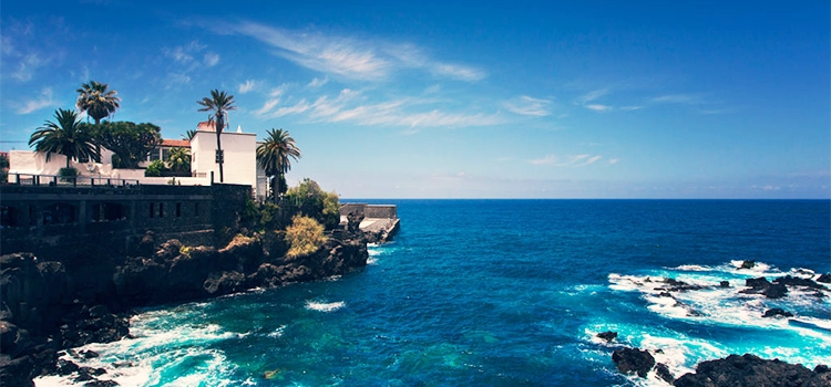 Tenerife Guided Tour: A Daily Diary