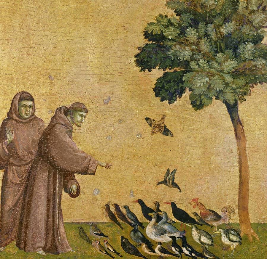 saint francis feeding birds