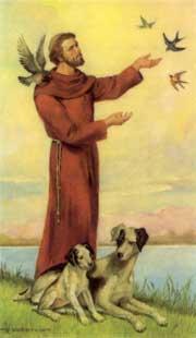 saint francis animals
