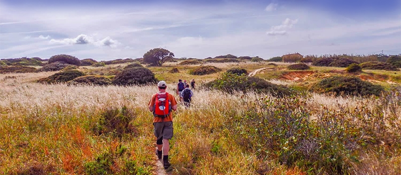 Why Autumn is the Best Season for Walking Holidays